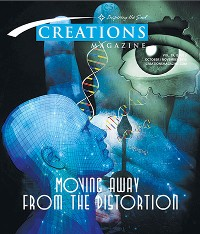 Creations | Moving Away From the Distortion